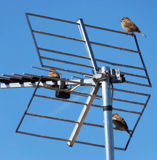 Best Laird Antenna